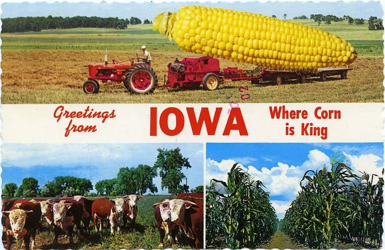 iowa.corn.king